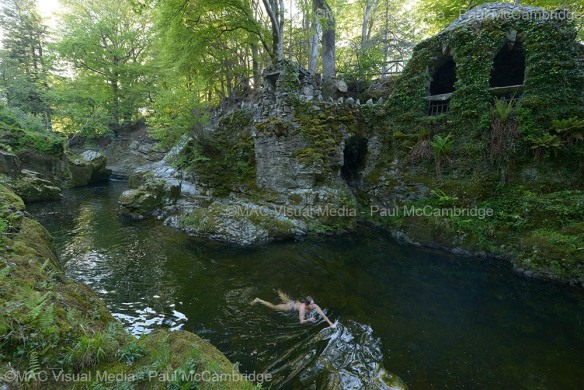 Hermitage Tollymore 11b web
