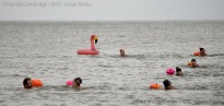 ©Paul McCambridge/MAC Visual Media 1st January 2018 Donaghadee Chunky Dunkers New Years Swim
