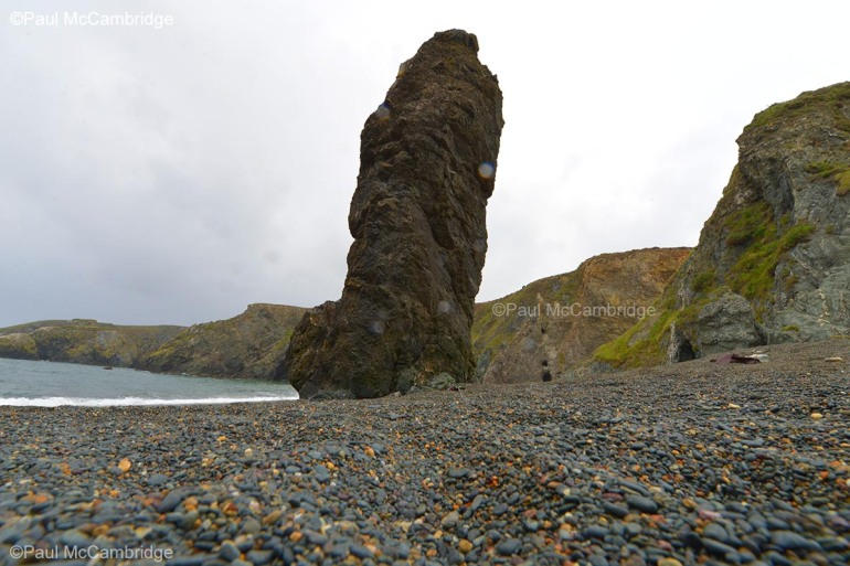 This image has an empty alt attribute; its file name is tramone-bay-bunmahon-09-wm.jpg